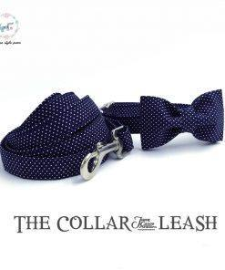Blue dotted dog collar and lead set