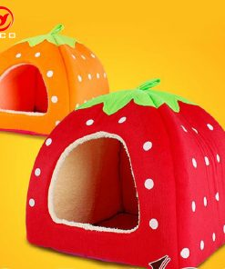 Strawberry cat house
