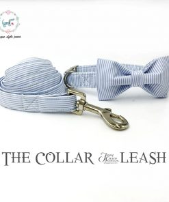 Blue striped dog collar set