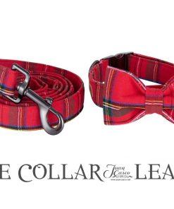 Christmas Collar and Leash