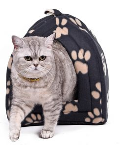Cat House with Paw Stripe