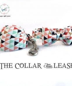 Colorful dog collar and leash set