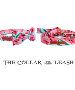 Watermelon collar and leash set