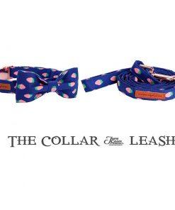 Strawberry Dog Collar and Leash Set