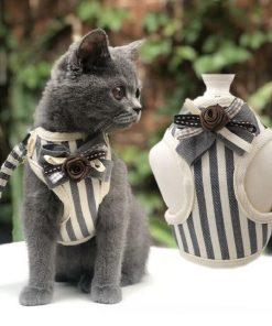 Small Pet Harness Leash