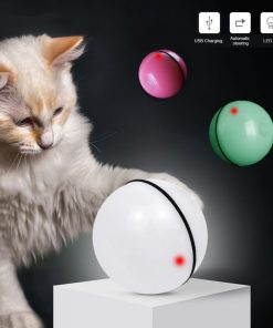 Smart Automatic Rolling Ball