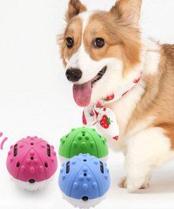 360-degree Rotating Dog Ball