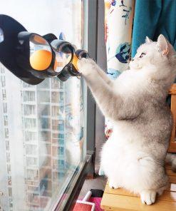 Window Interactive Cat Toys