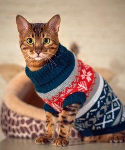 Snowflower Cat Sweater Knitwear