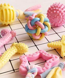 Chew Squeaky Toy